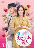 私のIDはカンナム美人DVD-BOX1